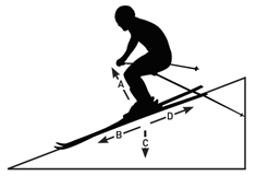 ski_diagram.png